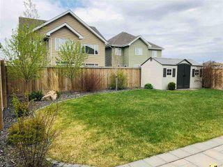 Photo 28: 4406 SUZANNA Crescent in Edmonton: Zone 53 House for sale : MLS®# E4148405