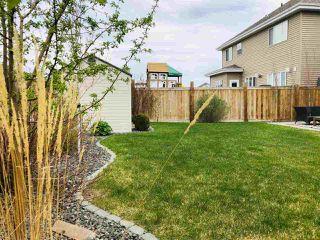 Photo 29: 4406 SUZANNA Crescent in Edmonton: Zone 53 House for sale : MLS®# E4148405