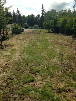 Photo 7: 452 Lakeview Drive: Rural Lac Ste. Anne County Rural Land/Vacant Lot for sale : MLS®# E4157760