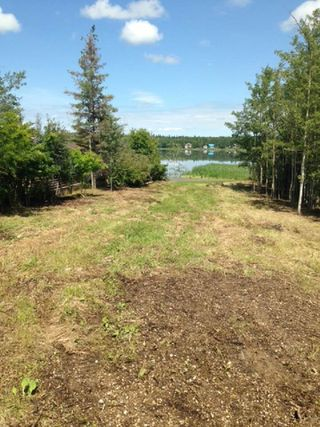 Photo 3: 452 Lakeview Drive: Rural Lac Ste. Anne County Rural Land/Vacant Lot for sale : MLS®# E4157760