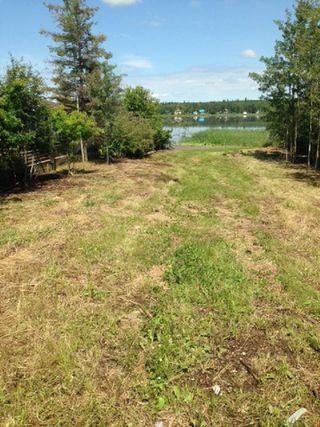Photo 4: 452 Lakeview Drive: Rural Lac Ste. Anne County Rural Land/Vacant Lot for sale : MLS®# E4157760