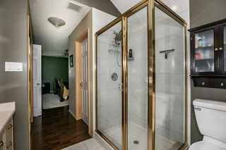 Photo 22: 451 REEVES Crest in Edmonton: Zone 14 House for sale : MLS®# E4163677