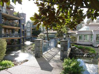 Photo 43: 309 3085 PRIMROSE Lane in LAKESIDE TERRACE: Home for sale : MLS®# V1112679
