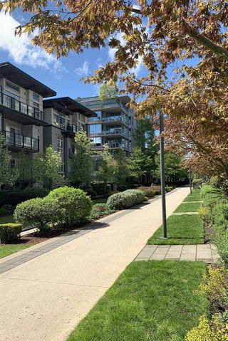 """Photo 22: 407 3382 WESBROOK Mall in Vancouver: University VW Condo for sale in """"TAPESTRY AT WESBROOK MALL"""" (Vancouver West)  : MLS®# R2455346"""
