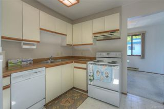 Photo 6: 407 439 Cook St in Victoria: Vi Fairfield West Condo for sale : MLS®# 845263