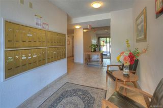 Photo 4: 407 439 Cook St in Victoria: Vi Fairfield West Condo for sale : MLS®# 845263