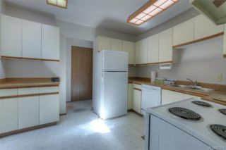 Photo 5: 407 439 Cook St in Victoria: Vi Fairfield West Condo for sale : MLS®# 845263