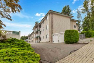 Photo 1: 304 7265 HAIG Street in Mission: Mission BC Condo for sale : MLS®# R2476532