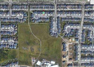 Photo 46: 8028 18 Avenue in Edmonton: Zone 53 House for sale : MLS®# E4212110