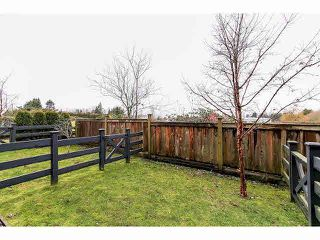 Photo 19: 33 7348 192A Street in Surrey: Clayton Townhouse for sale (Cloverdale)  : MLS®# F1430504