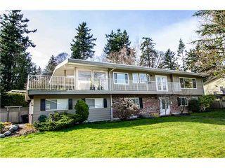 Main Photo: 975 EDEN Crescent in Tsawwassen: Tsawwassen East House for sale : MLS®# V1109694