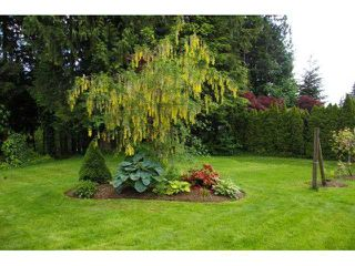 "Photo 18: 26280 127TH Avenue in Maple Ridge: Websters Corners House for sale in ""WHISPERING FALLS"" : MLS®# V1115800"