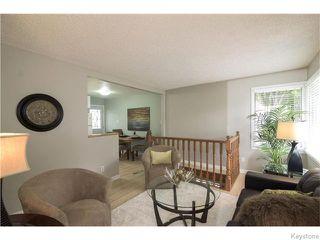 Photo 4: 29 Humboldt Avenue in WINNIPEG: St Vital Residential for sale (South East Winnipeg)  : MLS®# 1527574