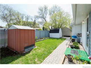 Photo 18: 378 McMeans Avenue East in Winnipeg: Transcona Residential for sale (North East Winnipeg)  : MLS®# 1613067