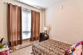 Photo 36: 213 6688 120 Street in Surrey: West Newton Condo for sale : MLS®# R2073002