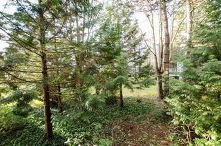 """Photo 9: 103 7591 MOFFATT Road in Richmond: Brighouse South Condo for sale in """"Brigantine Square"""" : MLS®# R2151738"""