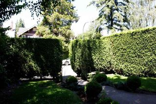 Photo 18: 3536 W 1ST Avenue in Vancouver: Kitsilano House for sale (Vancouver West)  : MLS®# R2203984