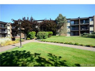 Photo 6: 325 1870 McKenzie Avenue in VICTORIA: SE Lambrick Park Residential for sale (Saanich East)  : MLS®# 340454