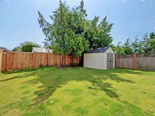 Photo 21: 4345 Shelbourne St in VICTORIA: SE Gordon Head House for sale (Saanich East)  : MLS®# 799553
