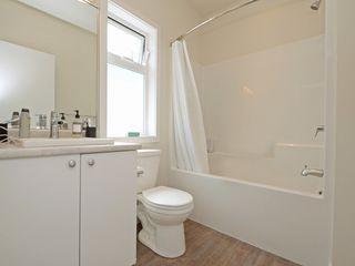 Photo 18: 4345 Shelbourne St in VICTORIA: SE Gordon Head House for sale (Saanich East)  : MLS®# 799553