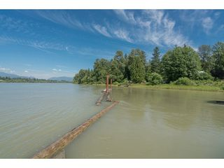Photo 14: 20837 LOUIE Crescent in Langley: Walnut Grove Business with Property for sale : MLS®# C8022792