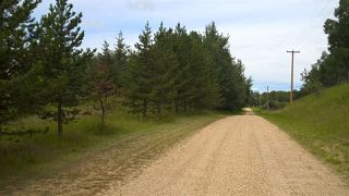 Photo 22: 51308A RGE RD 263 A: Rural Parkland County House for sale : MLS®# E4143799