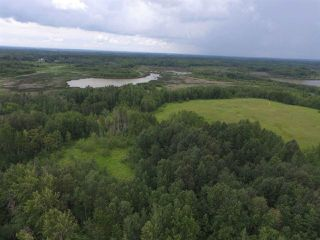 Photo 6: 51308A RGE RD 263 A: Rural Parkland County House for sale : MLS®# E4143799