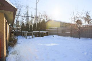 Photo 28: 11033 125 Street in Edmonton: Zone 07 House for sale : MLS®# E4145163