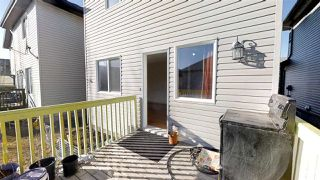 Photo 8: 3011 21 AVE Avenue in Edmonton: Zone 30 House for sale : MLS®# E4148604