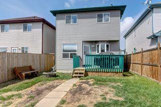 Photo 27: 100 TARINGTON Way NE in Calgary: Taradale Detached for sale : MLS®# C4243849
