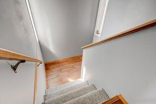 Photo 16: 100 TARINGTON Way NE in Calgary: Taradale Detached for sale : MLS®# C4243849