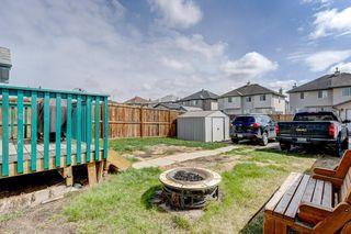 Photo 26: 100 TARINGTON Way NE in Calgary: Taradale Detached for sale : MLS®# C4243849
