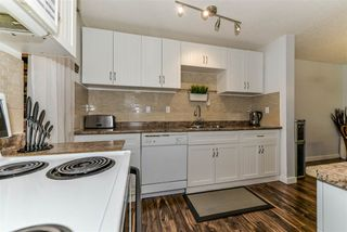 Photo 10: 5858 172 Street in Edmonton: Zone 20 Carriage for sale : MLS®# E4161261