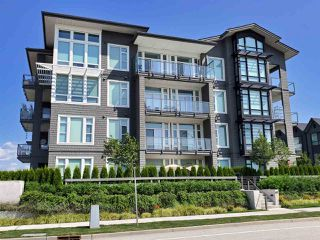 Photo 1: 417 2393 RANGER Lane in Port Coquitlam: Riverwood Condo for sale : MLS®# R2393686