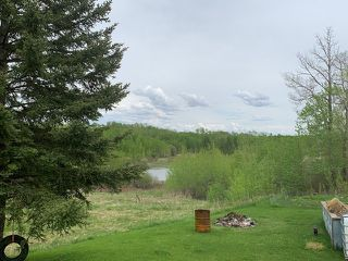 Photo 9: 52303 L RR 192: Rural Beaver County House for sale : MLS®# E4198574