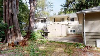 """Photo 15: 1430 DEPOT Road: Brackendale House for sale in """"Brackendale"""" (Squamish)  : MLS®# R2494429"""