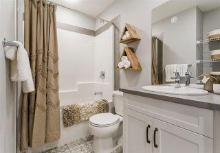 Photo 21: 2134 Maple Road in Edmonton: Zone 30 House Half Duplex for sale : MLS®# E4215298