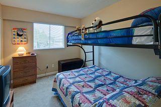 Photo 20: Pitt Meadows Split Level House for Sale @ 19344 121A Ave MLS #V924031