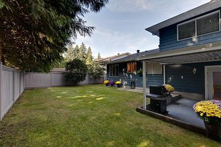 Photo 14: Pitt Meadows Split Level House for Sale @ 19344 121A Ave MLS #V924031