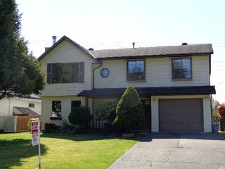 Photo 1: 20926 95A AV in Langley: Walnut Grove House for sale : MLS®# F1309921