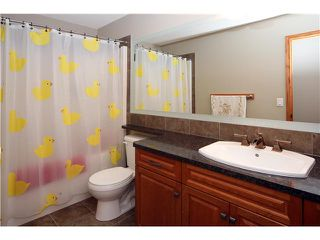 Photo 20: 112 SKYVIEW SHORES Gardens NE in CALGARY: Skyview Ranch Residential Detached Single Family for sale (Calgary)  : MLS®# C3621562