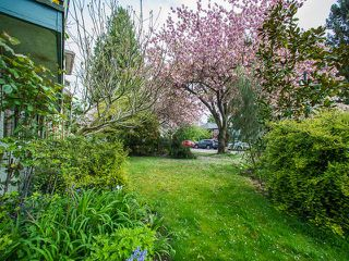 Photo 20: 295 E 30TH Avenue in Vancouver: Main House for sale (Vancouver East)  : MLS®# R2056734