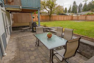 Photo 19: 3669 VINCENT Street in Port Coquitlam: Glenwood PQ House for sale : MLS®# R2057240