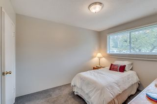 Photo 11: 3669 VINCENT Street in Port Coquitlam: Glenwood PQ House for sale : MLS®# R2057240