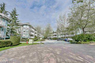 """Photo 11: 115 15130 108 Avenue in Surrey: Bolivar Heights Condo for sale in """"RIVERPOINTE"""" (North Surrey)  : MLS®# R2165986"""