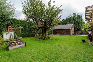 Photo 18: 33319 HOLLAND Avenue in Abbotsford: Central Abbotsford House for sale : MLS®# R2214006