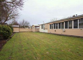 Photo 20: 6525 REID Road in Sardis: Sardis West Vedder Rd House for sale : MLS®# R2234413