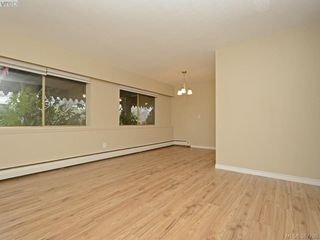 Photo 8: 132 964 Heywood Avenue in VICTORIA: Vi Fairfield West Condo Apartment for sale (Victoria)  : MLS®# 387798