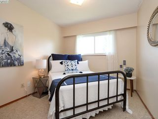 Photo 10: 4416 Torquay Dr in VICTORIA: SE Gordon Head Single Family Detached for sale (Saanich East)  : MLS®# 786613