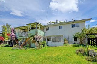 Photo 20: 4416 Torquay Dr in VICTORIA: SE Gordon Head Single Family Detached for sale (Saanich East)  : MLS®# 786613